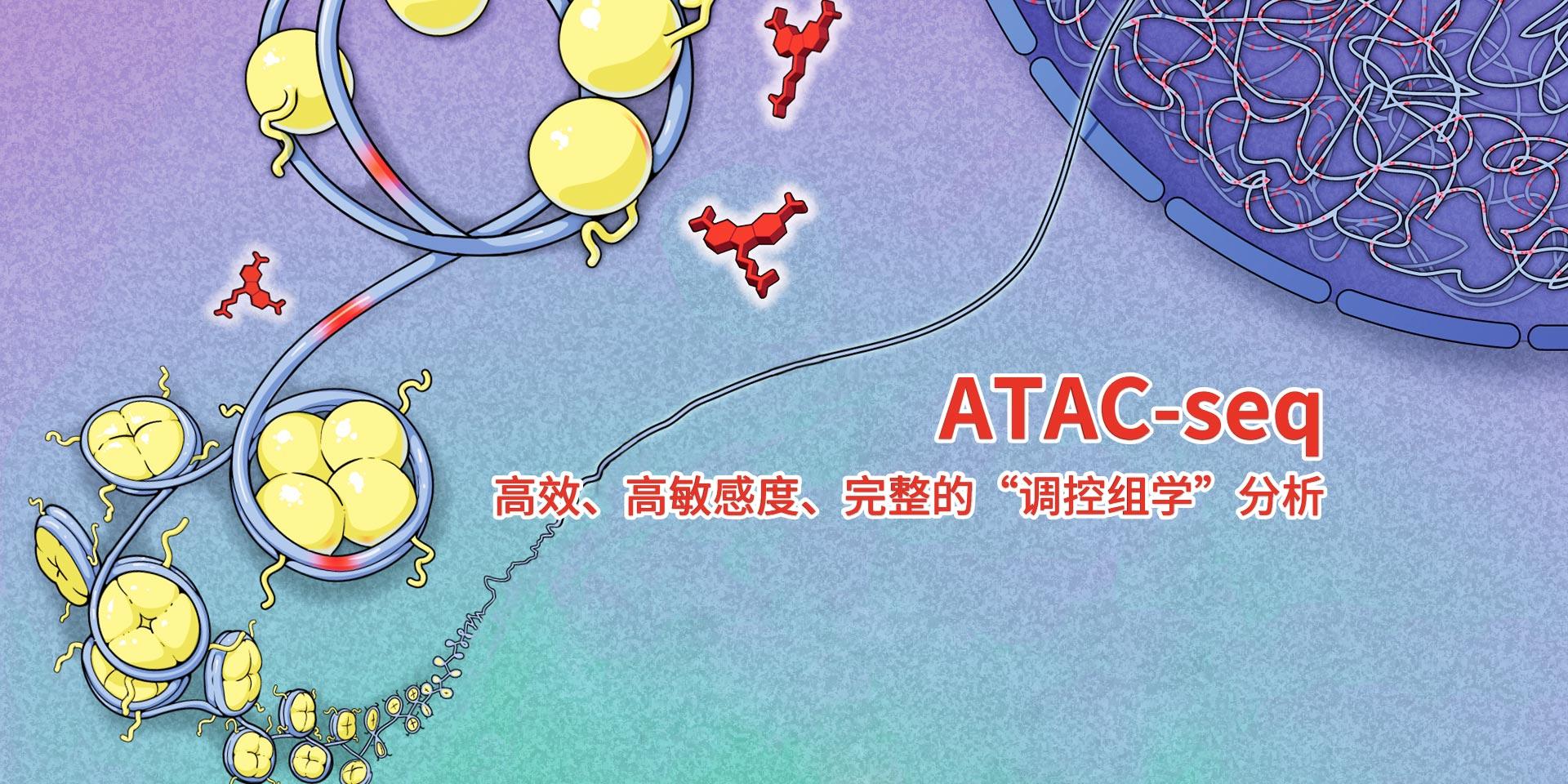 广州表观生物科技有限公司-69-8轮播图