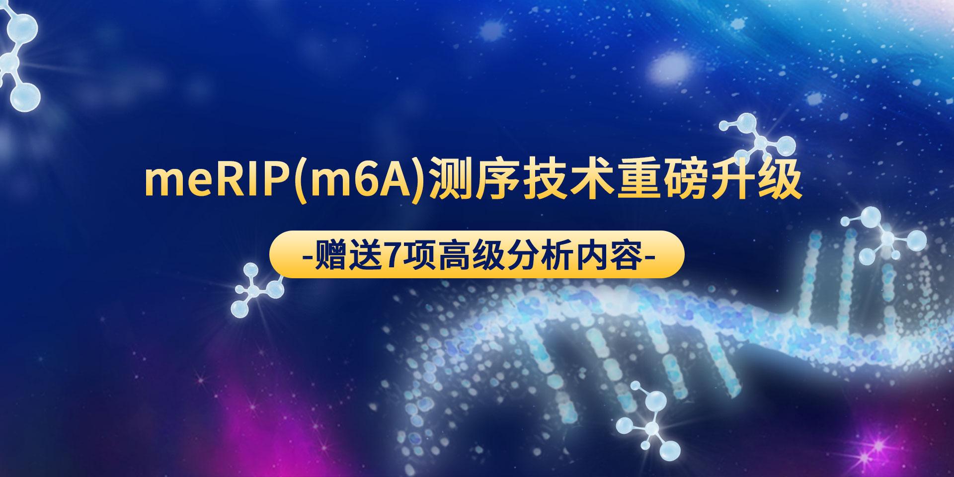 广州表观生物科技有限公司-69-9轮播图