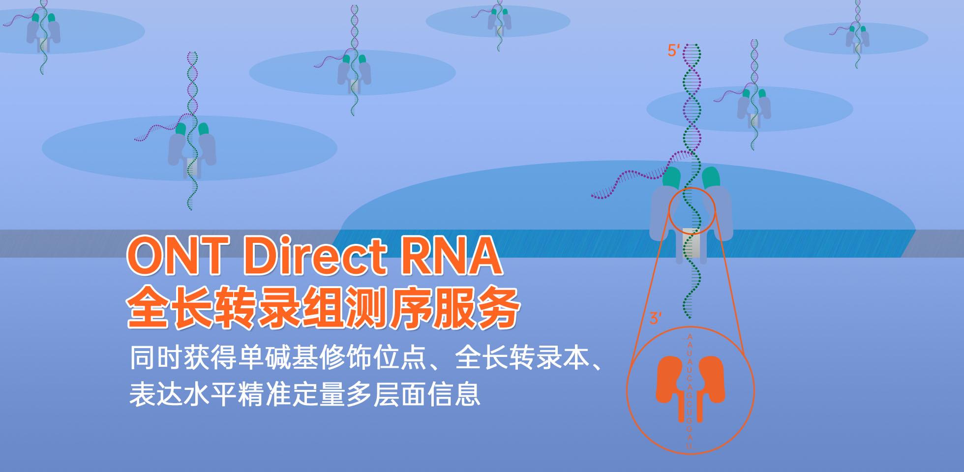 广州表观生物科技有限公司-69-5轮播图