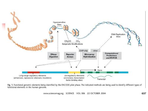 生物医学学生研究表观遗传好发学术文章么?真实情况如何?图