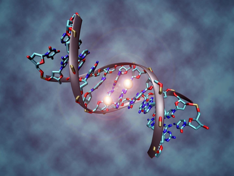 目前,表观遗传学的研究也有一些不同的情况图