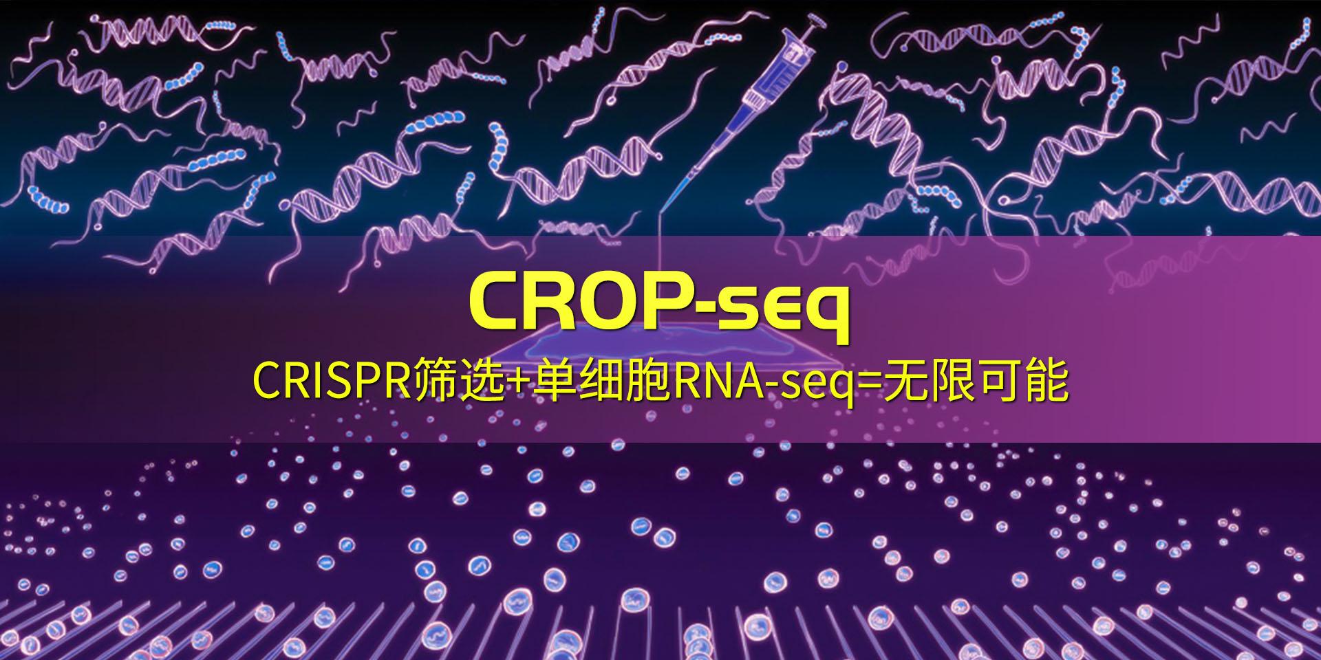 广州表观生物科技有限公司-69-4轮播图