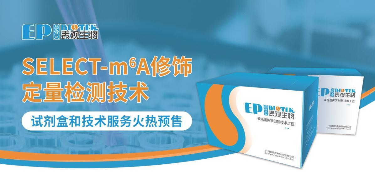 【预售】SELECT-m6A修饰定量检测技术图