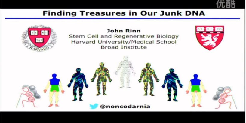 The Noncoding Genome_ Finding Treasures in our Junk DNA图