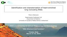 心脏特异性相关lncRNAs鉴定及功能研究图