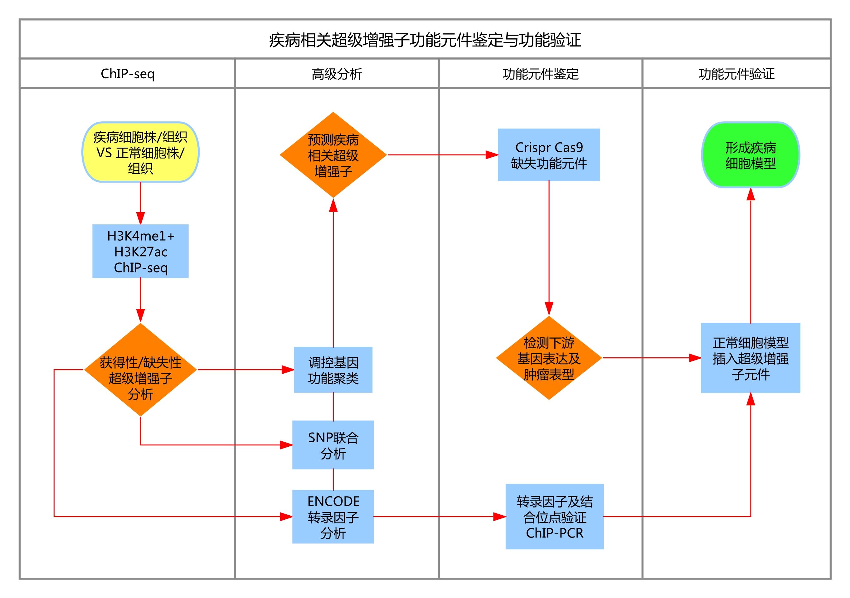 【冲刺2017NSFC】疾病相关超级增强子功能元件鉴定与功能验证研究路径图