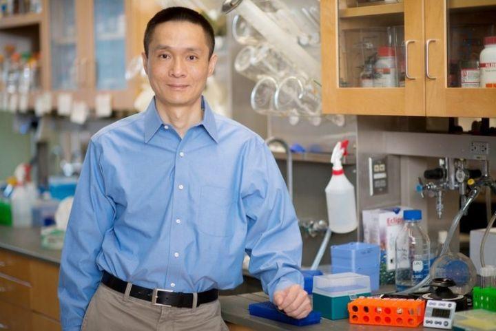 RNA表观遗传学开创者何川: 总想着赚钱太急功近利图
