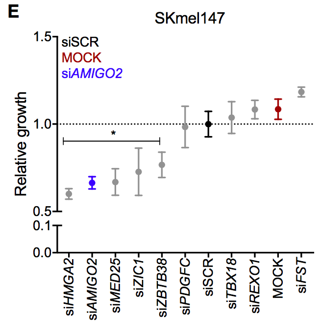 Mol Cell: 超级增强子突变促黑色素瘤生长图