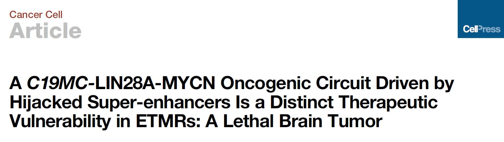 Cancer Cell: 超级增强子驱动致命性儿童脑瘤发展!图