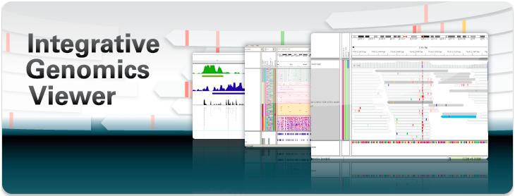 表观学院| 如何用IGV可视化测序结果?视频教学!图