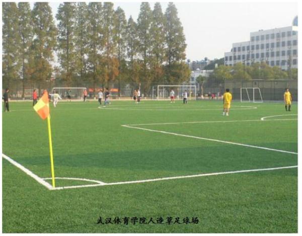 武汉体育学院人造草足球场图