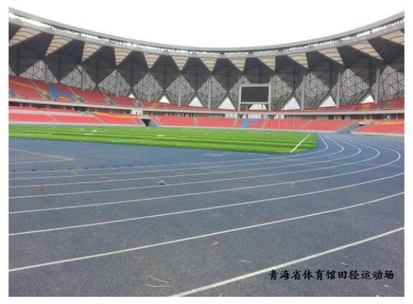 青海省体育馆田径运动场图