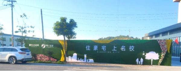 梅州畲江珠江花城图