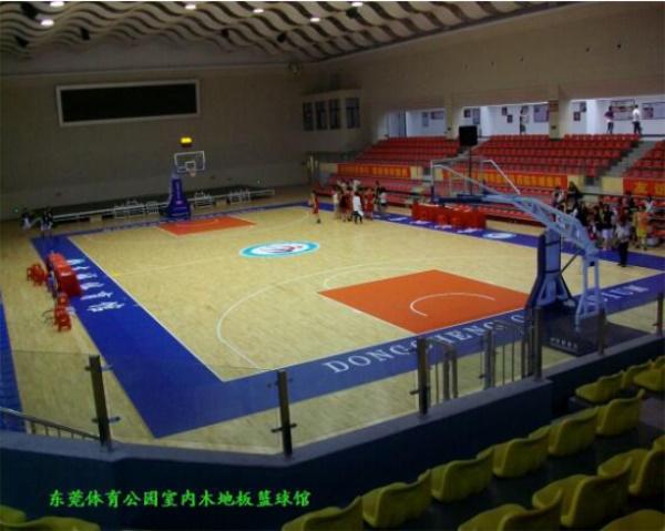 东莞东城体育馆-篮球馆图