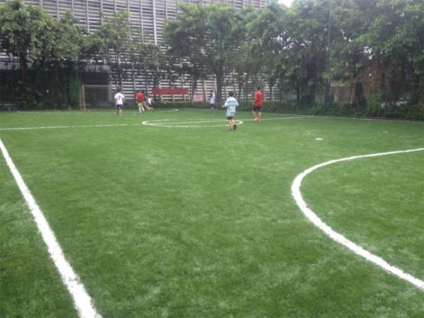 广州开发区第一体育中心足球场图
