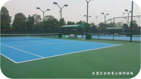 东莞长安体育公园足球馆图