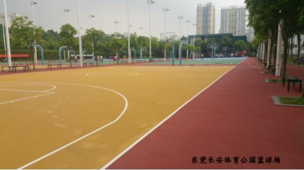 东莞长安体育公园篮球馆图
