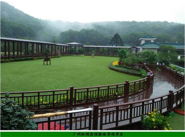 广州松园宾馆楼面景观草皮图