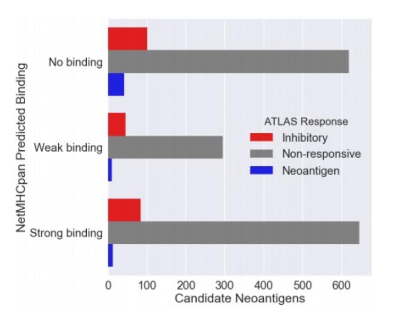 实测数据及分析结果示例 5