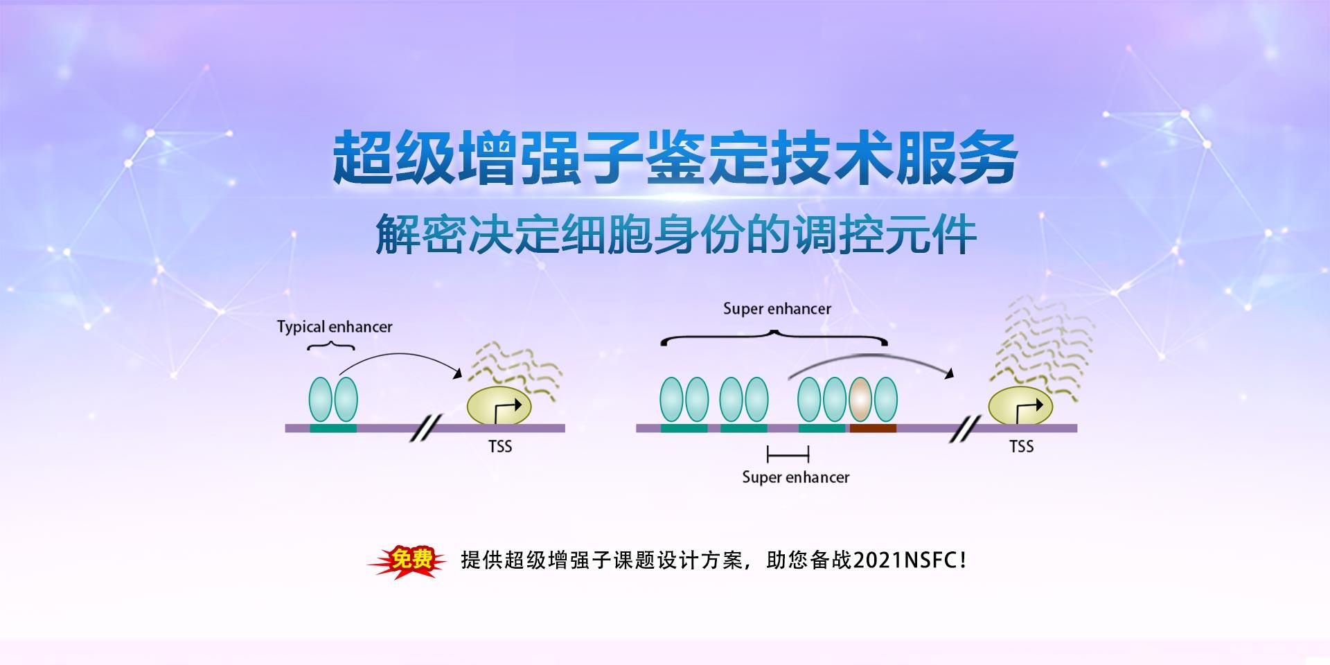 广州表观生物科技有限公司-69-7轮播图