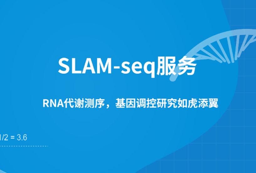SLAM-seq服务(RNA代谢测序)图