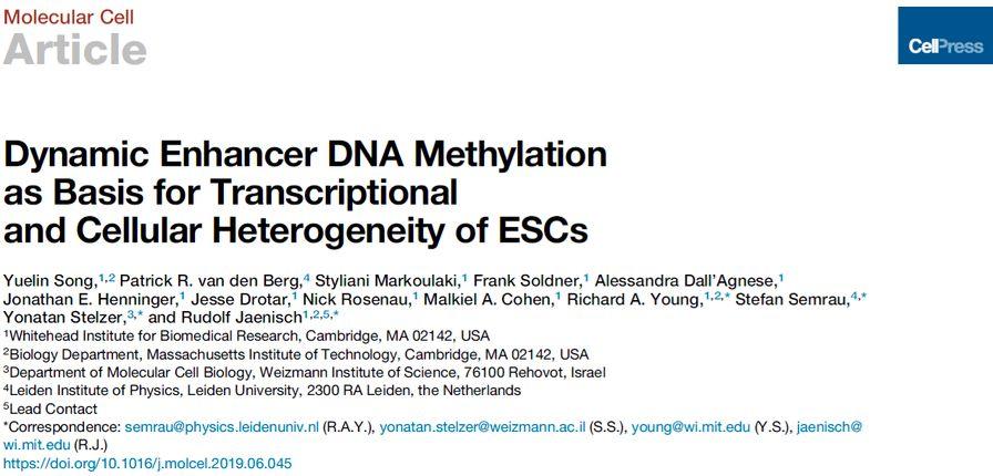 Molecular Cell | 宋岳林等揭示超级增强子动态甲基化调控转录异质性图