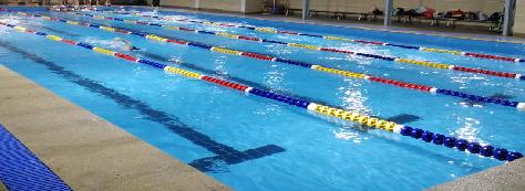 沙面人民游泳场图
